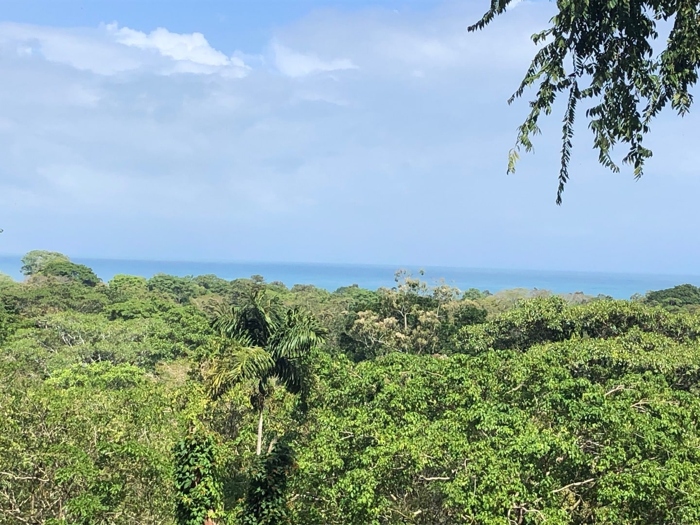 Ocean View Property with Potencial for Hotel ro B&B